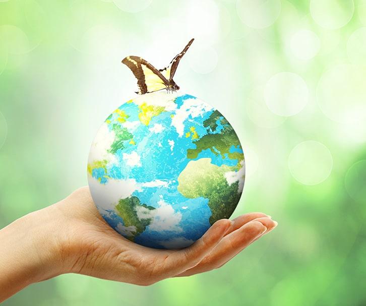 שמירה על איכות הסביבה